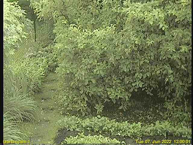 Gartenwebcam
