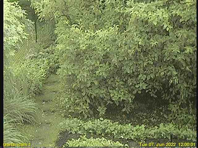 Garten-Webcam